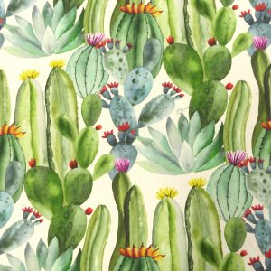 Toile Coton - Imprimé Cactus